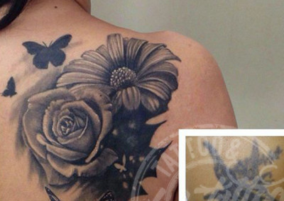cover up lodo
