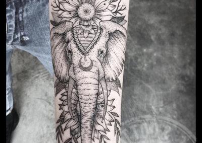 ELEPHANT-FLOWER